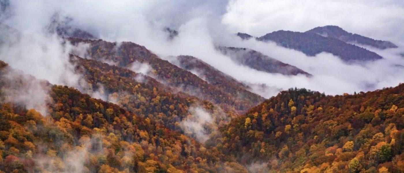 Road Trip: Great Smoky Mountains National Park
