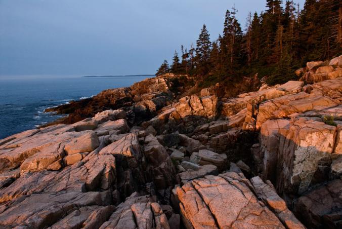 Road Trip: Acadia National Park